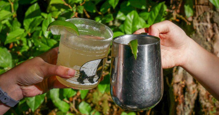 Camp Margaritas